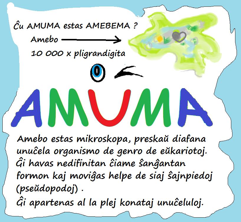 Onko AmUmA  ameeba vai mikä ?